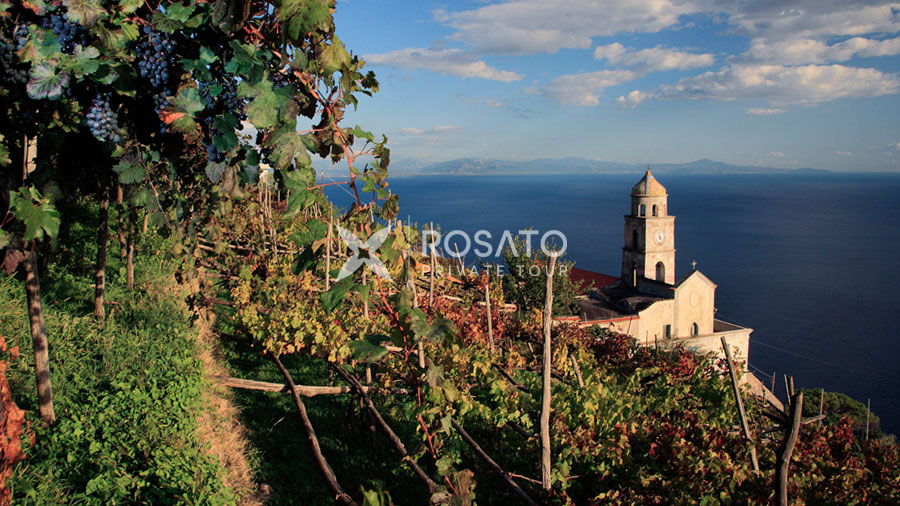 Shore Excursion Wine tasting amalfi coast amalfi coast from Naples