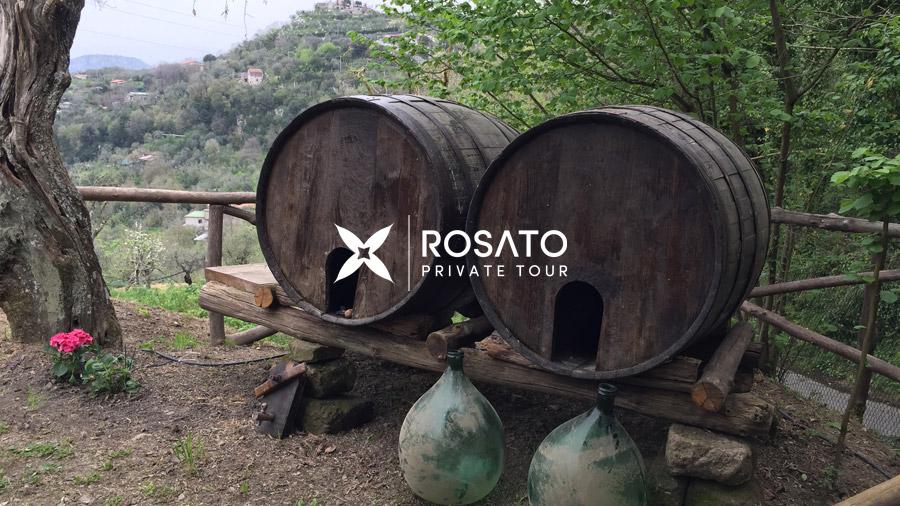 Wine Tasting Salerno shore excursion